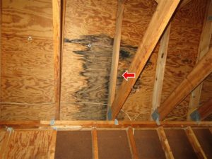 home inspections with photos verify the inspectors findings